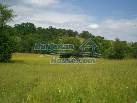 8913:2 - Bulgarian land for sale near Elena Veliko Tyrnovo