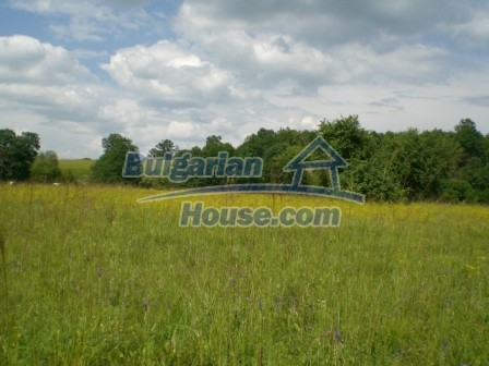 8913:3 - Bulgarian land for sale near Elena Veliko Tyrnovo