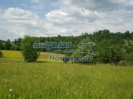 8967:1 - Cheap plot of bulgarian lands for sale in Veliko Tyrnovo region