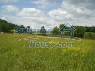 8976:1 - Land for sale in the village of Biyalkovtsi-Elena