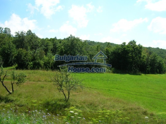 8979:10 - Big plot of bulgarian land for sale
