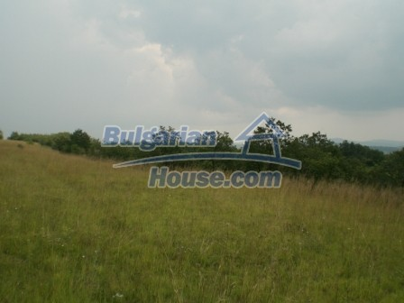 9006:2 - Cheap Bulgarian land near Lovech for sale