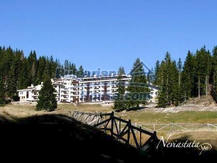 9291:3 - Cozy bulgarian apartments for sale in Pamporovo