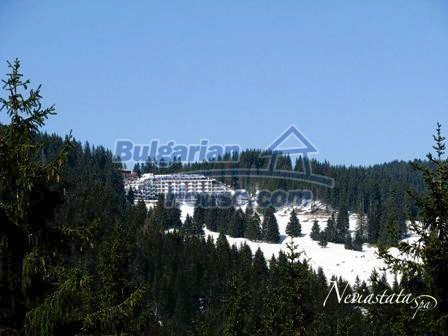 9291:22 - Cozy bulgarian apartments for sale in Pamporovo
