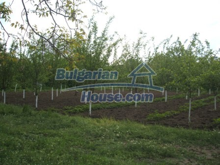 9354:8 - Are you looking for a house in Bulgaria near turkish border