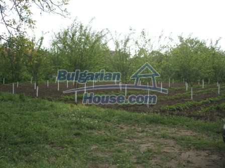 9354:9 - Are you looking for a house in Bulgaria near turkish border