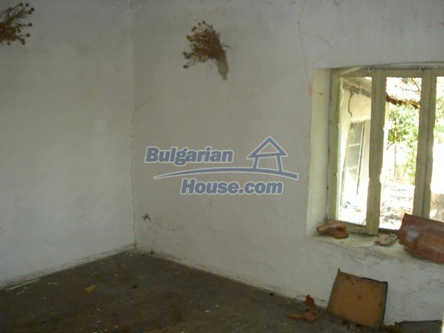 10750:5 - One-storey house in clean rural countryside, Elhovo