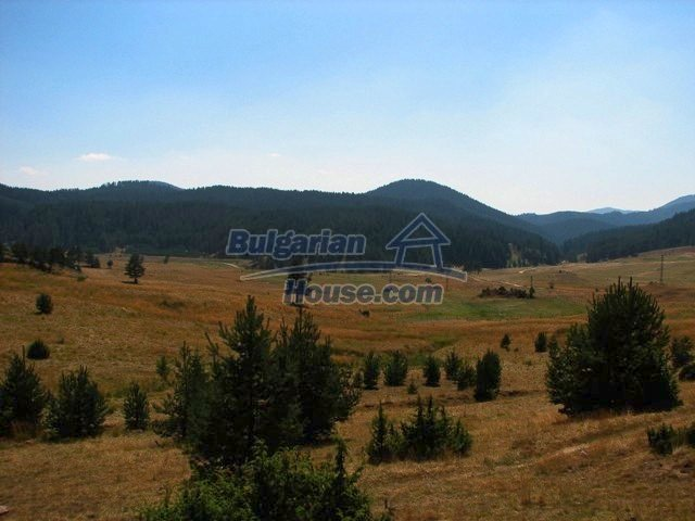 Investment Land for sale near Smolyan - 10756