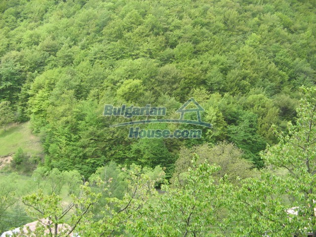 10770:10 - Regulated plot of land in a picturesque village near Pamporovo