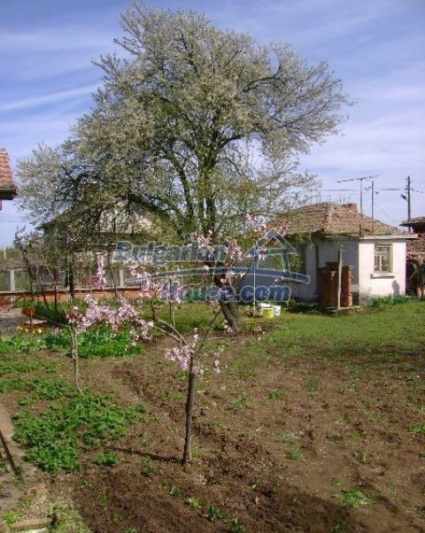 10812:9 - Well maintained house with a vineyard near Stara Zagora