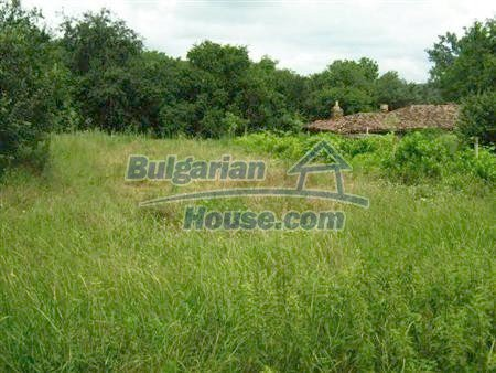 10906:4 - New rural house with a huge garden plot
