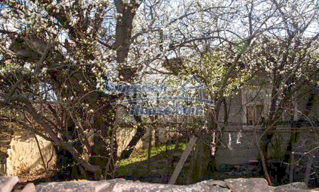 11041:17 - Old house with a tremendous garden plot, Shumen region