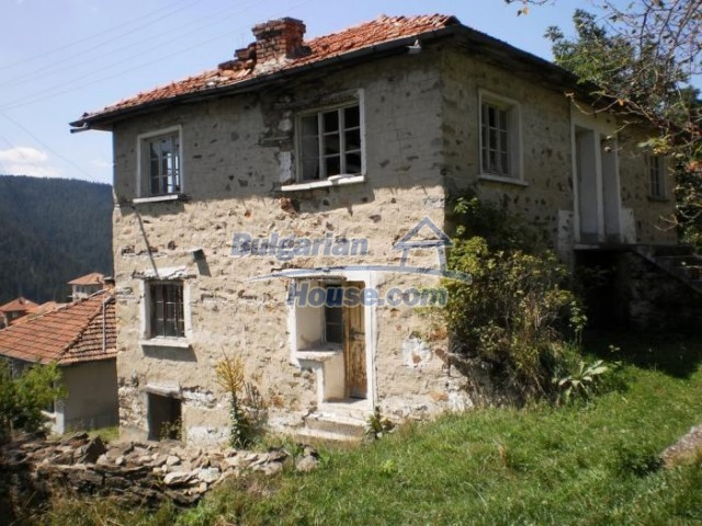 11180:1 - Rural house close to a pine forest,Rhodope Mountains