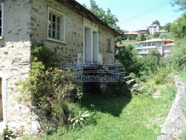 11180:6 - Rural house close to a pine forest,Rhodope Mountains