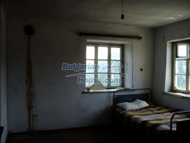 11180:11 - Rural house close to a pine forest,Rhodope Mountains