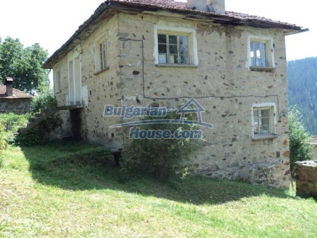 11180:7 - Rural house close to a pine forest,Rhodope Mountains