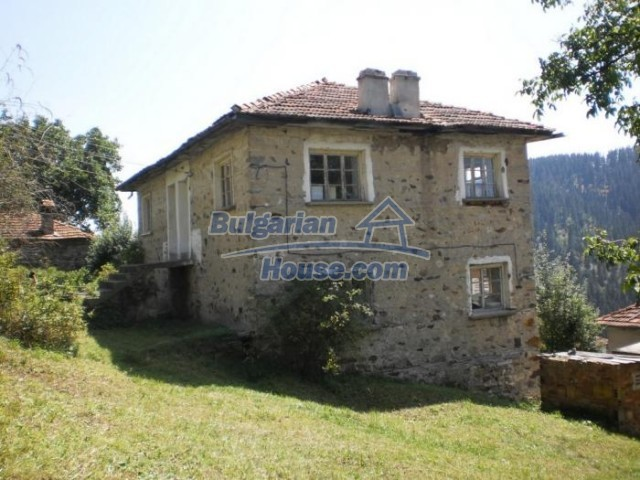 11180:8 - Rural house close to a pine forest,Rhodope Mountains