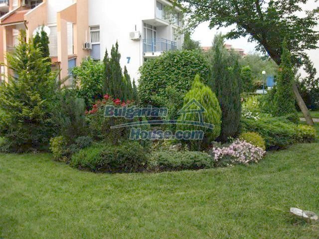 11255:8 - Well maintained furnished seaside studio in Sunny Beach