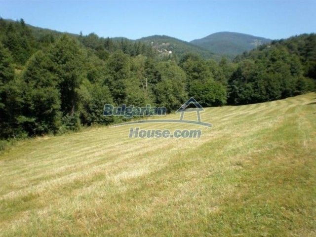 11527:3 - Extensive land plot in the majestic Rhodope Mountains