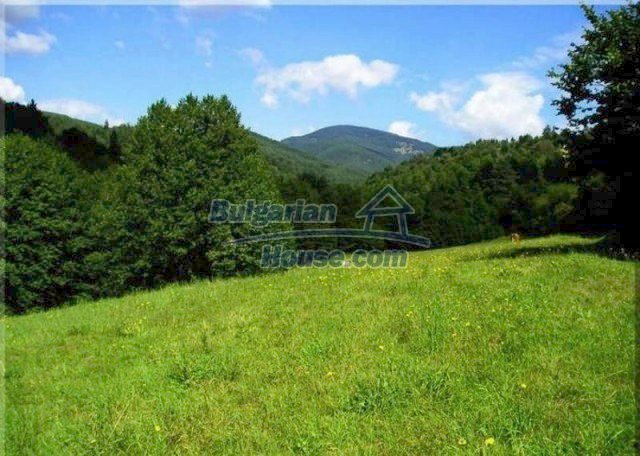 11527:11 - Extensive land plot in the majestic Rhodope Mountains