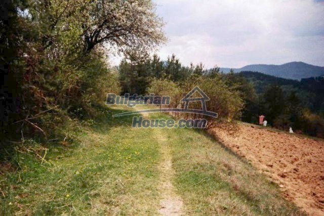 11527:10 - Extensive land plot in the majestic Rhodope Mountains