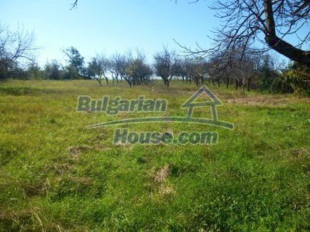 11540:14 - Two houses for the price of one, huge garden-4200sq.m in Vratsa
