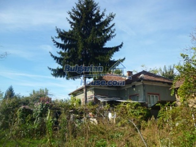 11668:2 - Two nice cheap houses and a huge garden 25 km from Danube River