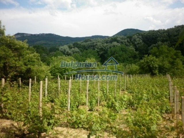 11677:14 - House with miraculous surroundings 5 km away from Vratsa city