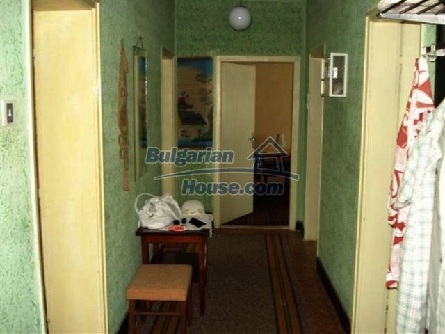 11813:3 - Ground floor with furniture and sunny garden in Elhovo