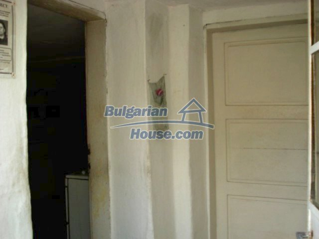 11909:3 - Spacious well maintained house with lovely garden in Elhovo town