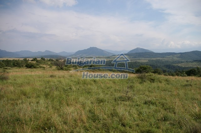 10936:4 - Cheap agricultural land for sale in Berkovitsa, Montana region