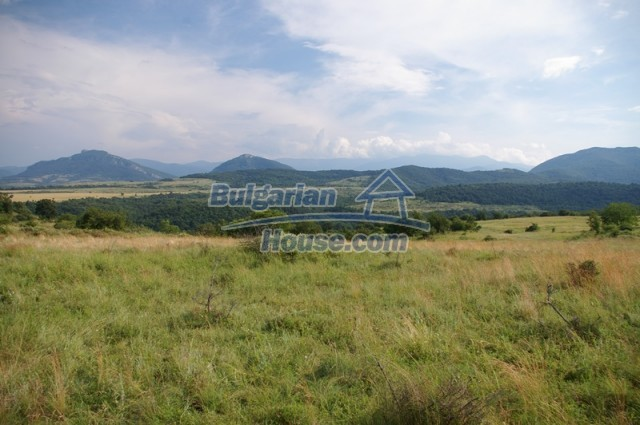 10936:6 - Cheap agricultural land for sale in Berkovitsa, Montana region