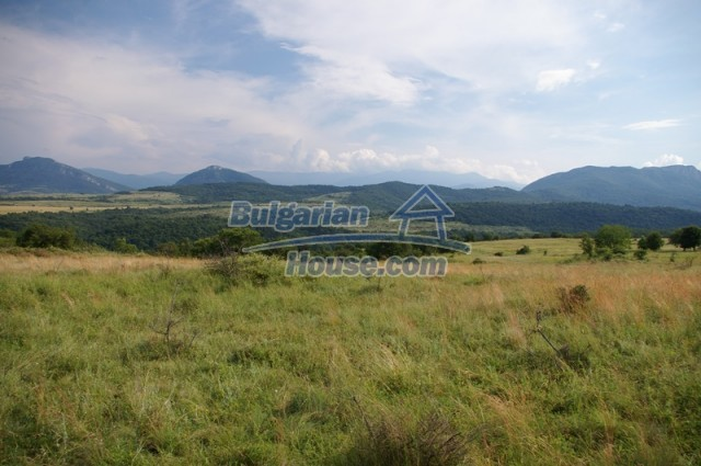 10936:7 - Cheap agricultural land for sale in Berkovitsa, Montana region