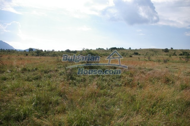 10936:13 - Cheap agricultural land for sale in Berkovitsa, Montana region