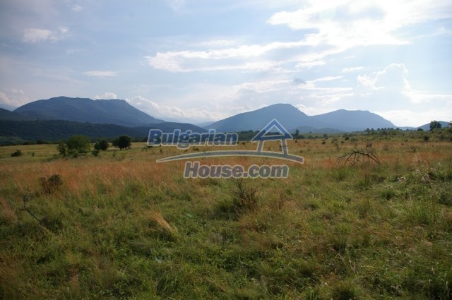 10936:8 - Cheap agricultural land for sale in Berkovitsa, Montana region