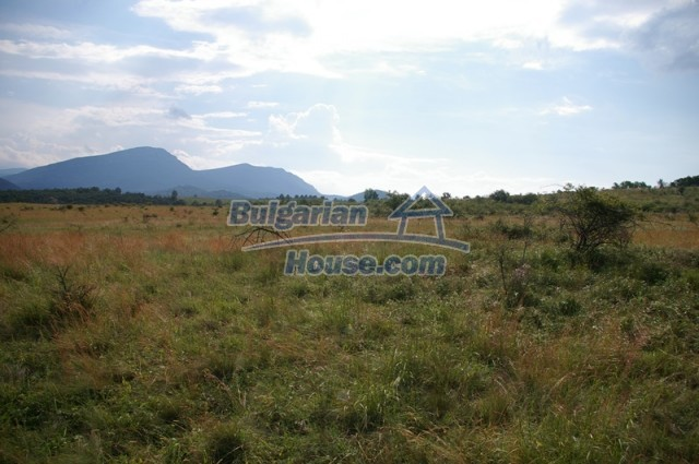 10936:10 - Cheap agricultural land for sale in Berkovitsa, Montana region