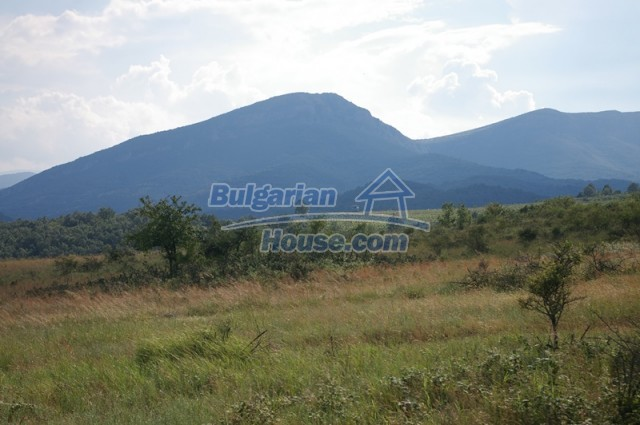 10936:17 - Cheap agricultural land for sale in Berkovitsa, Montana region