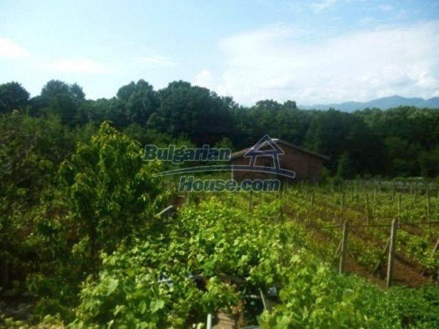 12156:20 - Lovely and cheap Bulgarian house near Vratsa – enchanting views
