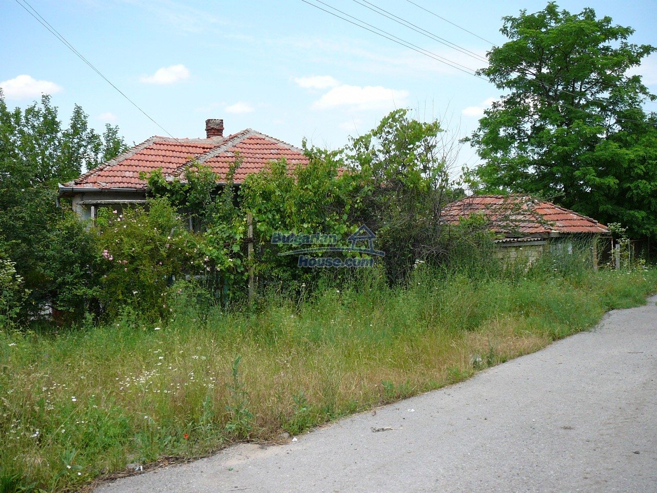 11515:2 - Cheap rural house with an extensive gardengreat investment
