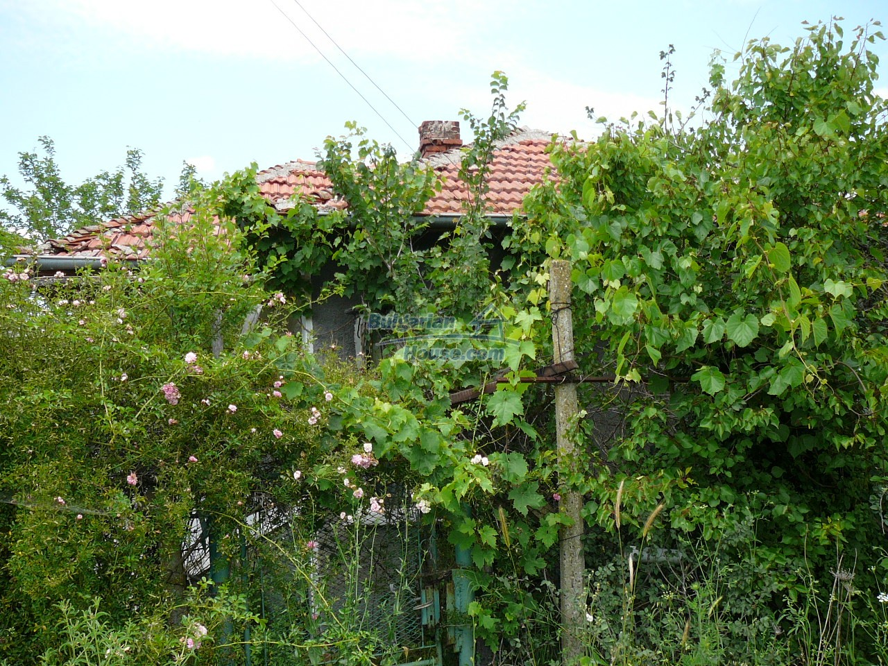 11515:12 - Cheap rural house with an extensive gardengreat investment