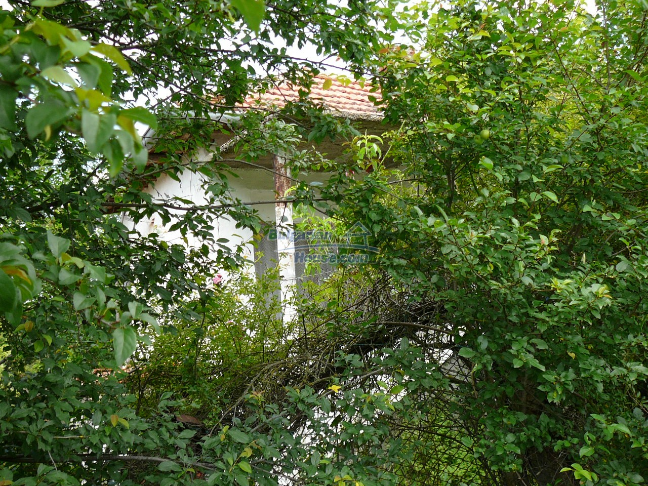 11515:13 - Cheap rural house with an extensive gardengreat investment