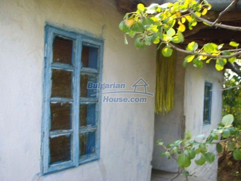 11973:3 - Cheap rural house near the lovely Strandzha Mountain