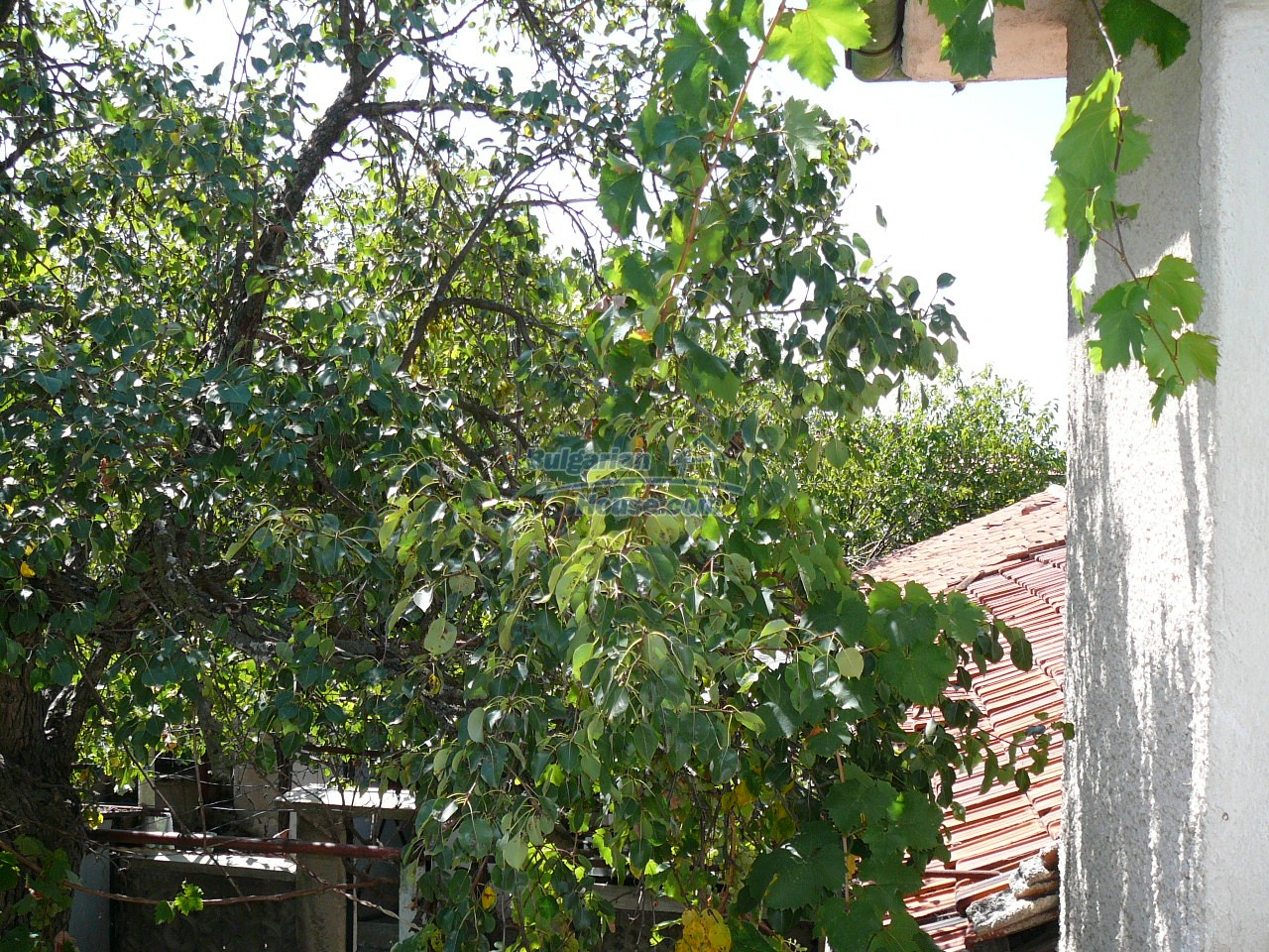 12527:42 - House  in good condition Stara Zagora region 55km to Plovdiv