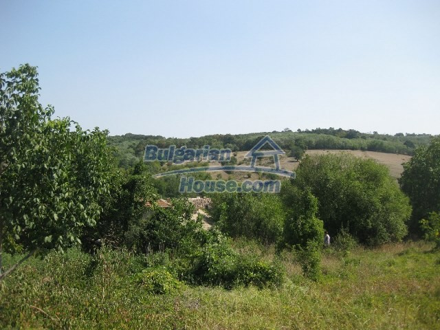 11130:56 - Two cheap properties in an illustrious hilly village near Popovo