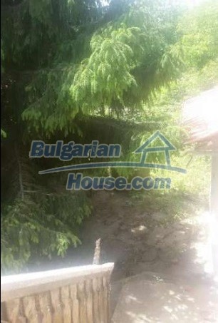 12293:12 - Cheap property in Veliko Tarnovo region with water well