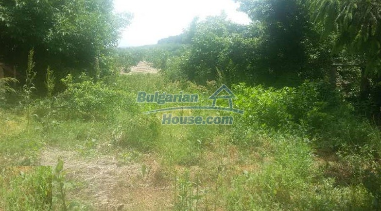 12293:7 - Cheap property in Veliko Tarnovo region with water well
