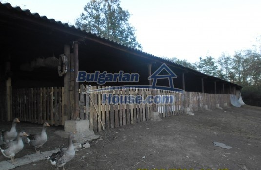 12329:3 - Small farm with big plot land for sale in Lovech region,Bulgaria