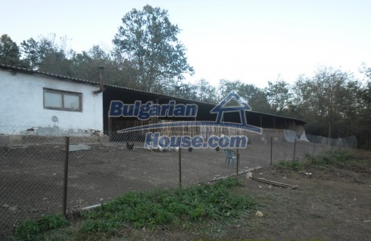 12329:2 - Small farm with big plot land for sale in Lovech region,Bulgaria