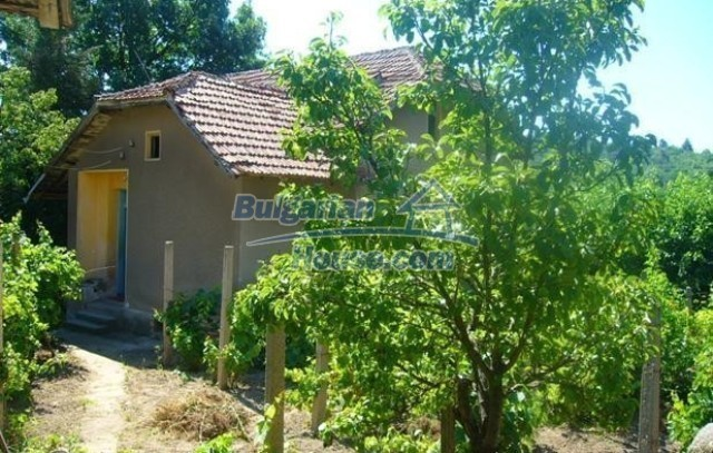 11636:3 - Compact furnished house with a large beautiful garden - Montana