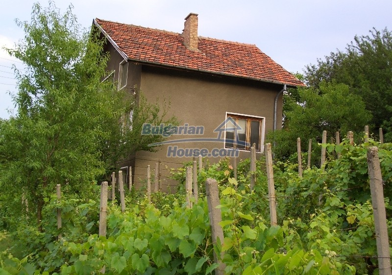 12041:5 - Nice and spacious house near Danube River – scenic surroundings